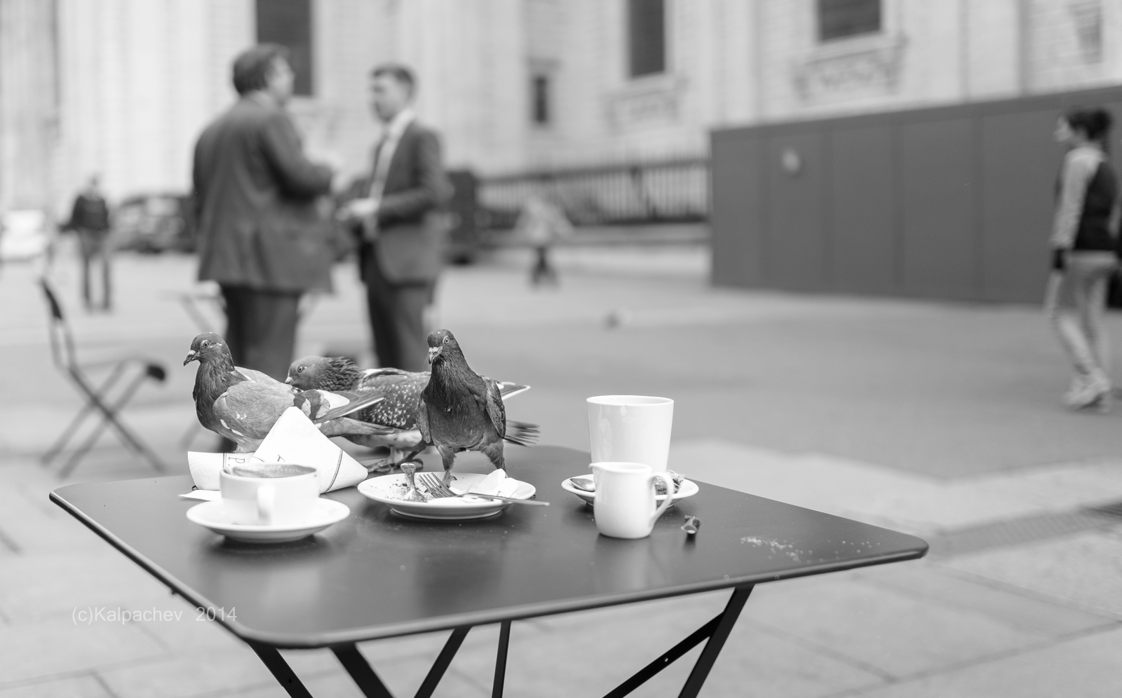 Pigeons attack Paul cafe at St. Paul Cathedral, London