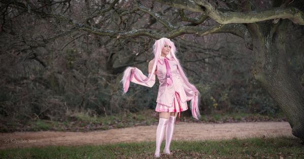 Sakura Miku fairy tale